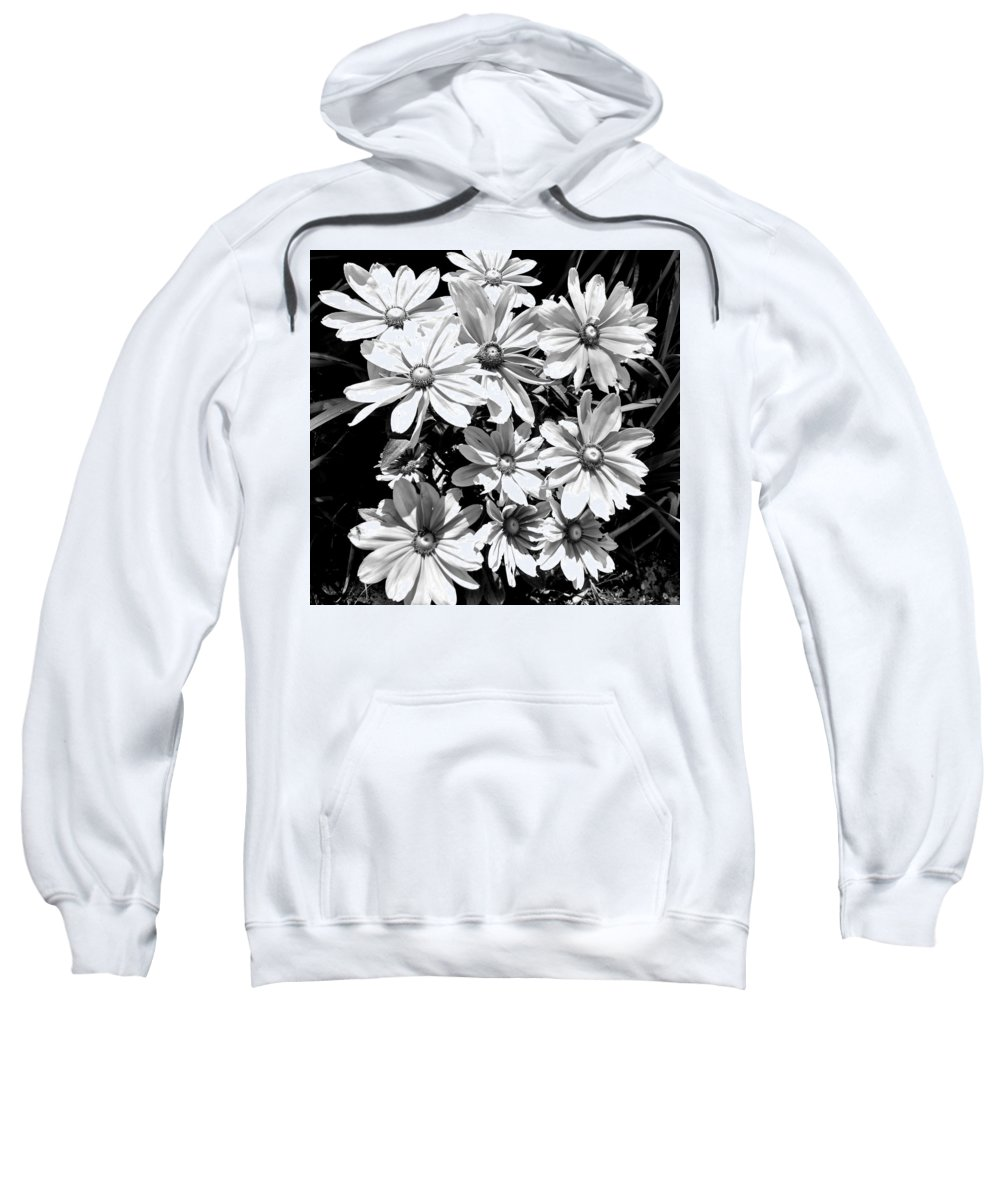 Golden Eyed Susan Sweatshirt featuring the photograph Golden Eyed Susan 2 by Jennifer Kohler