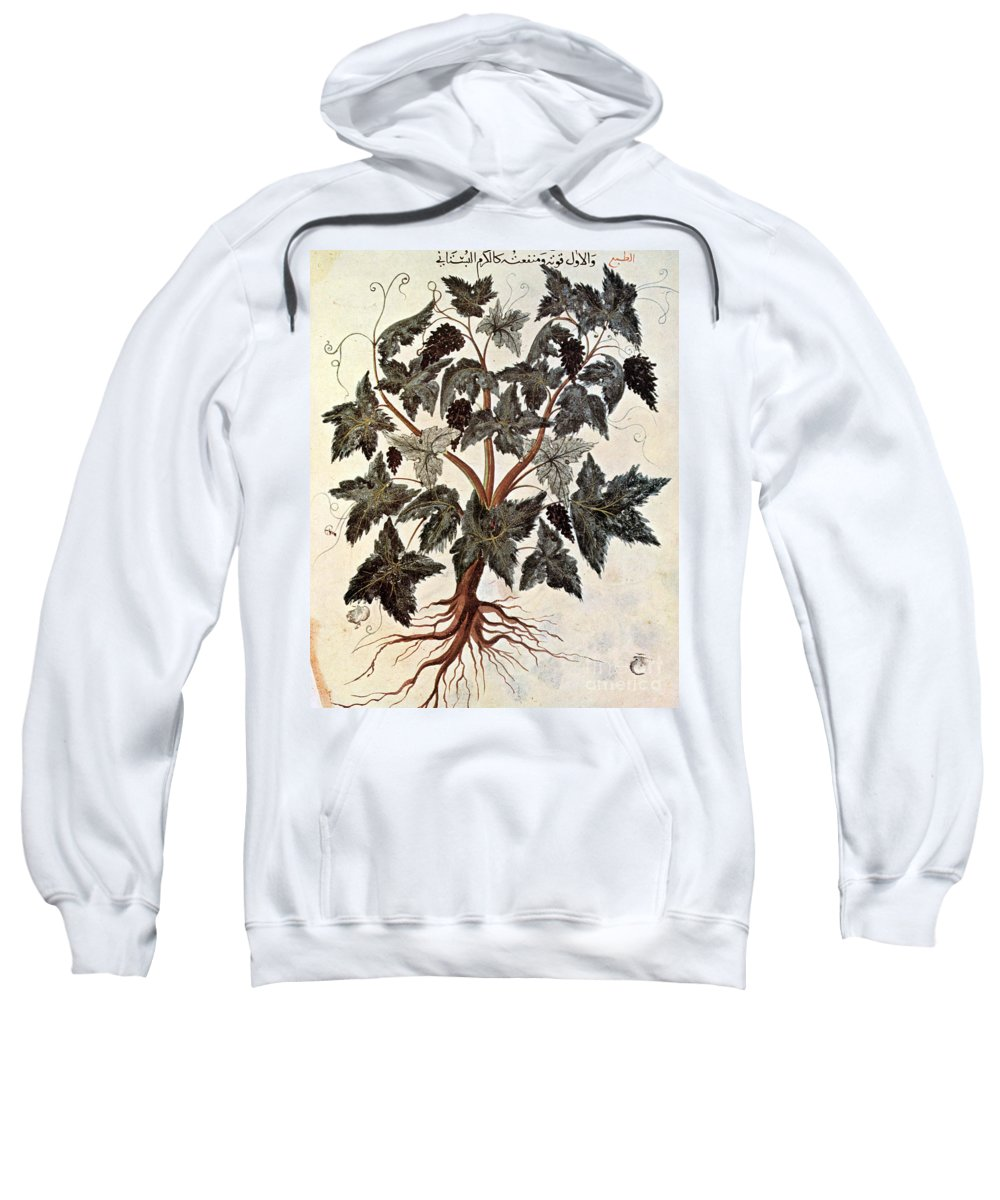 1229 Sweatshirt featuring the photograph Grapevine, 1229 by Granger