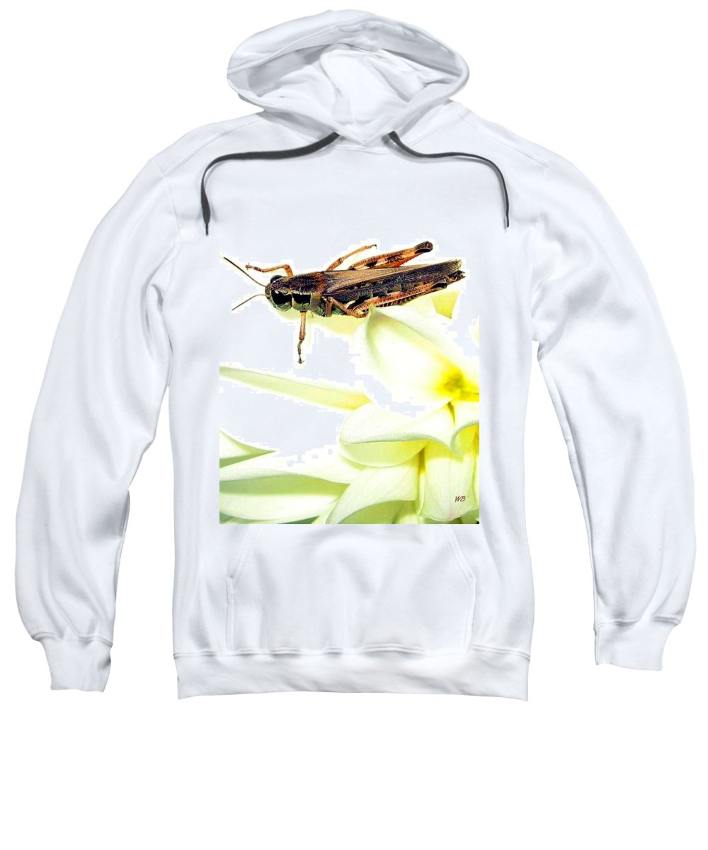 Grasshopper Sweatshirt featuring the photograph Grasshopper by Will Borden