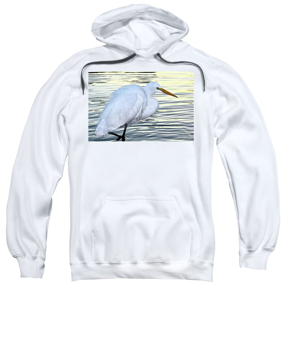 Bird Sweatshirt featuring the photograph Great Egret by Diana Hatcher