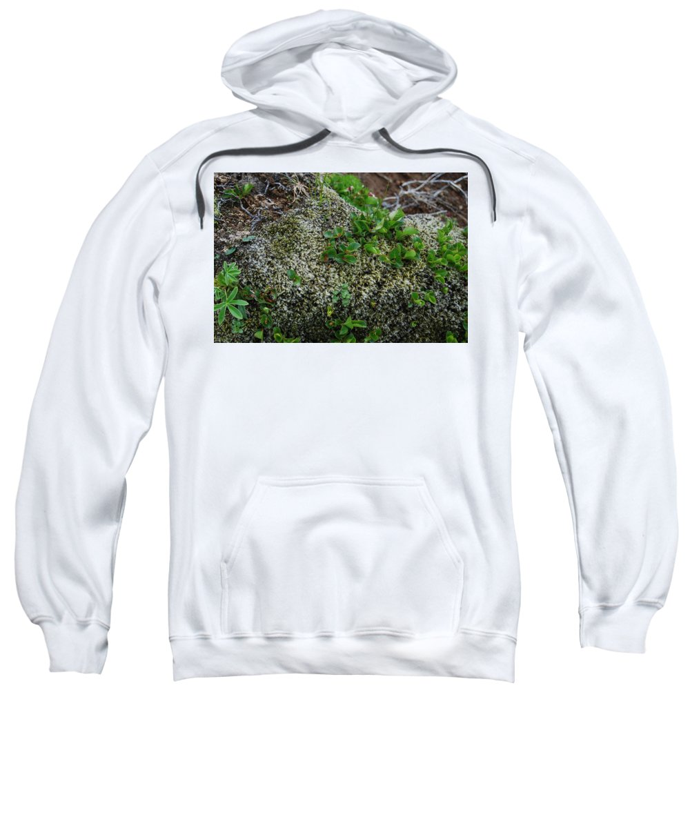 Green Sweatshirt featuring the photograph Green On Rocks by Kristen Bird