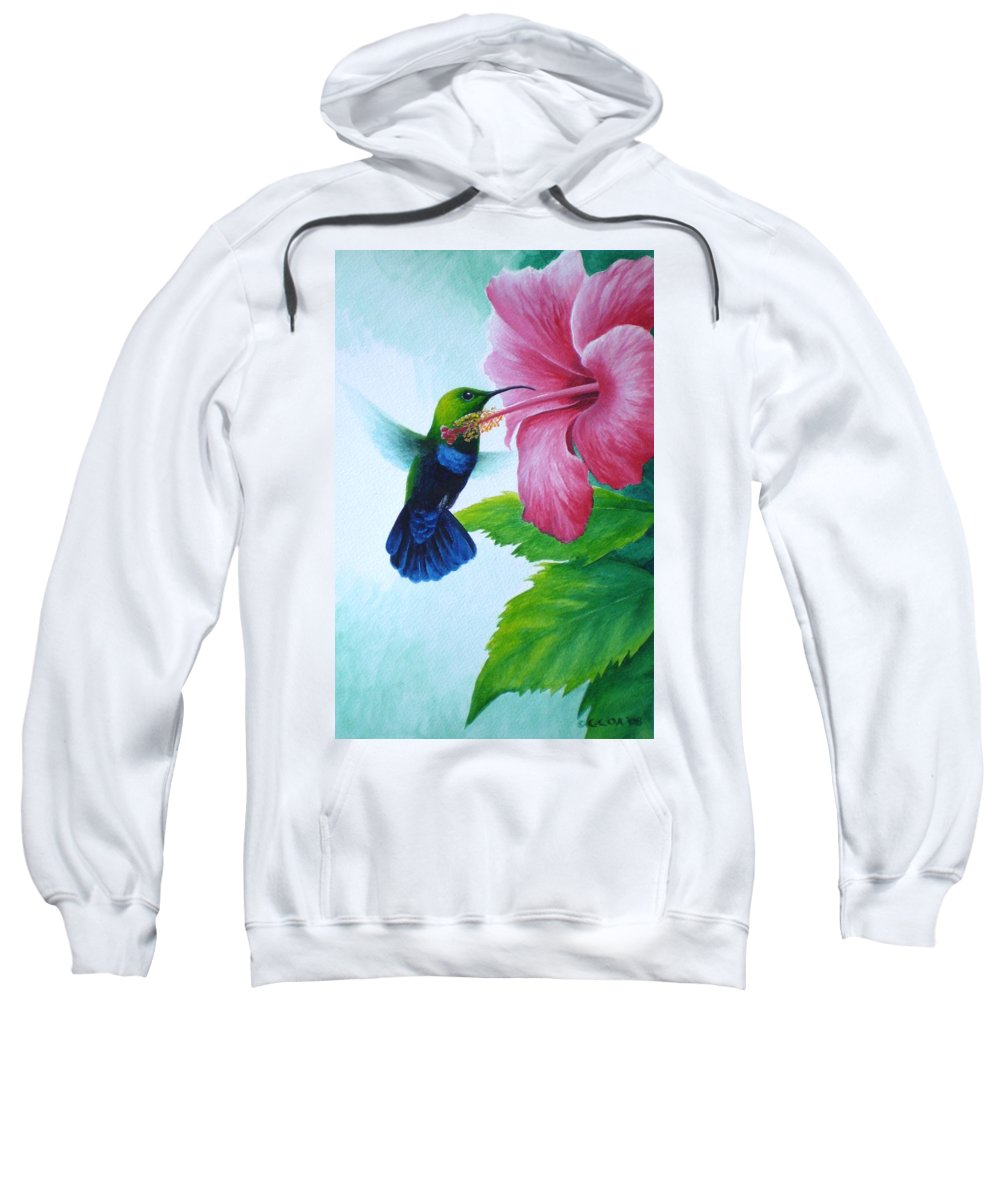 Green-throated Carib Hummingbird Sweatshirt featuring the painting Green-throated Carib And Pink Hibiscus by Christopher Cox