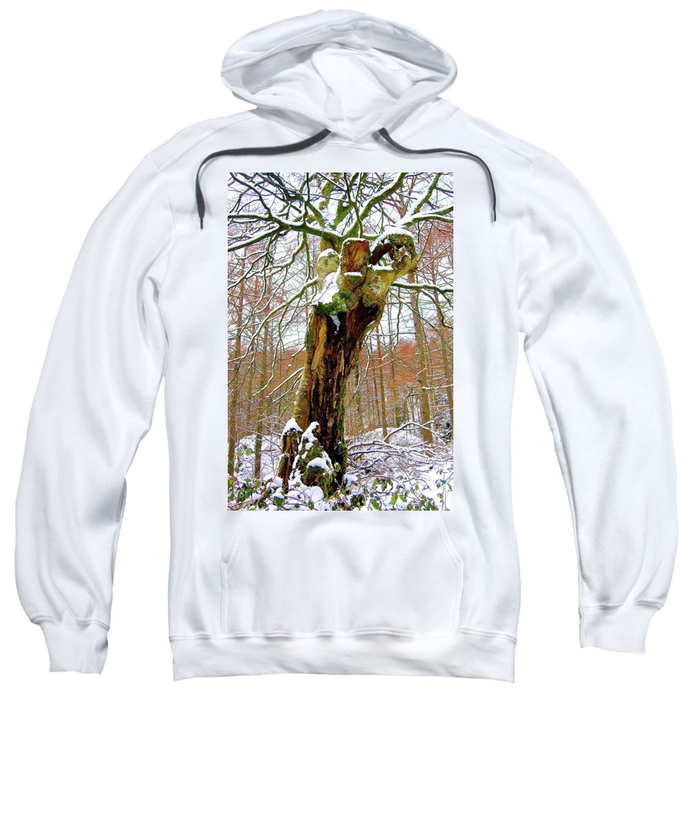 Nature Sweatshirt featuring the photograph Ground Control by Xabi Lobo