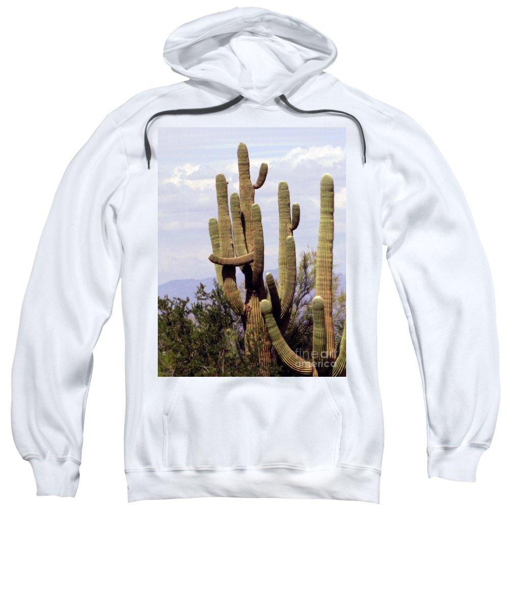 Saguaro Cactus Sweatshirt featuring the photograph Group Hug by Marilyn Smith