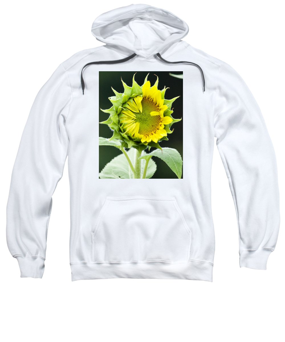Flower Sweatshirt featuring the photograph Halfway There by Tiffany Erdman