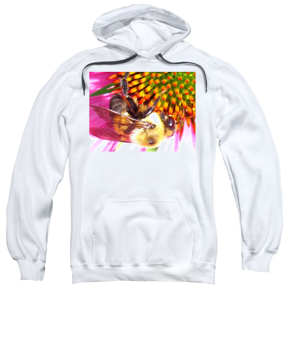 Bee Sweatshirt featuring the photograph Hanging In There by Ian MacDonald