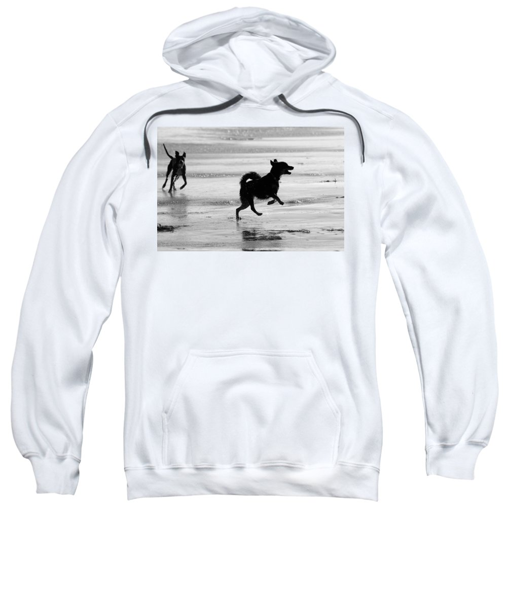 Black And White Sweatshirt featuring the photograph Happy Dog Black And White by Jill Reger