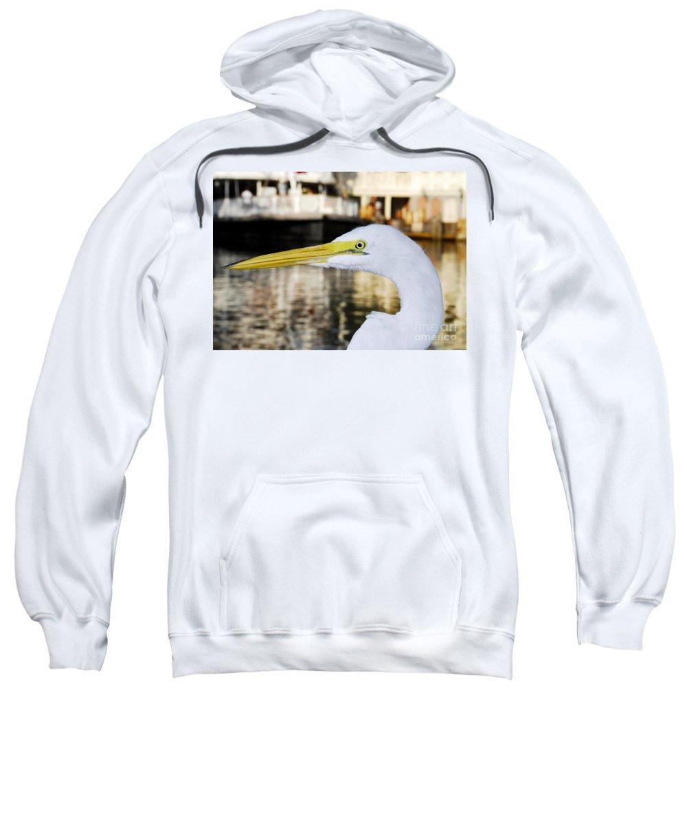 Egret Sweatshirt featuring the photograph Harbor Egret by David Lee Thompson