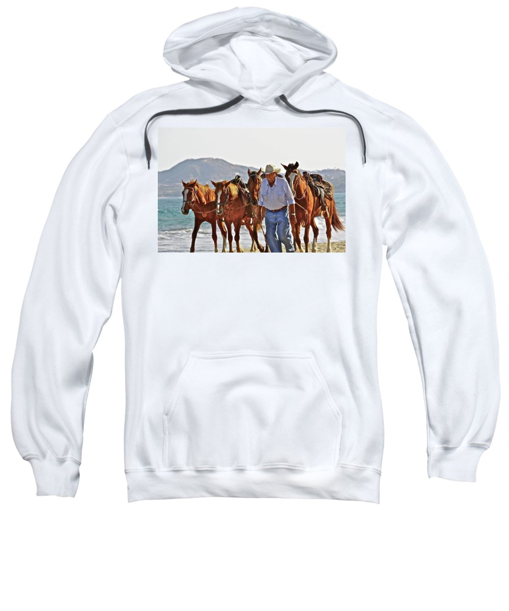 Animals Sweatshirt featuring the photograph Hardworking Man by Diana Hatcher