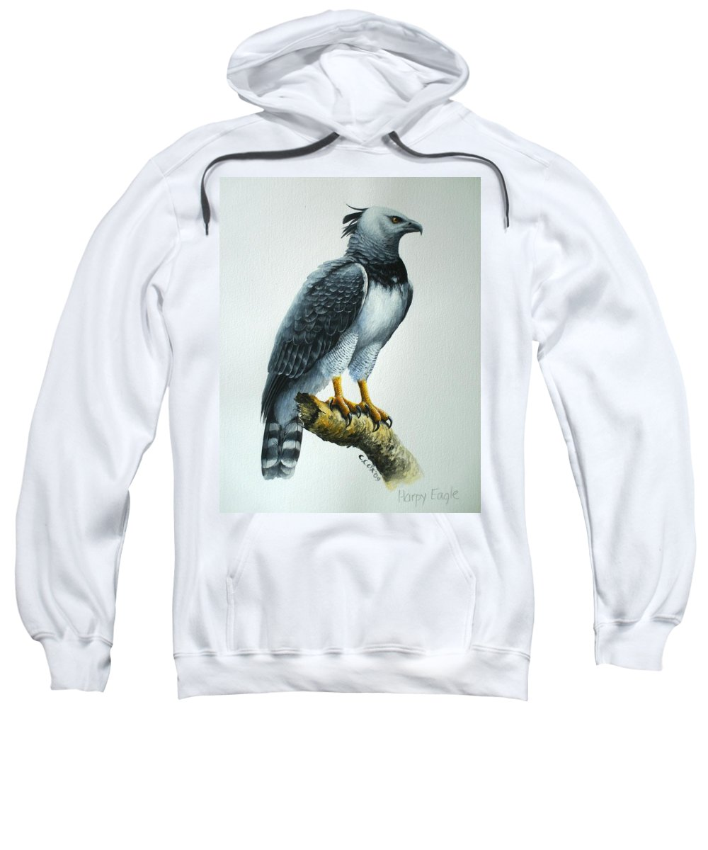 Harpy Eagle Sweatshirt featuring the painting Harpy Eagle by Christopher Cox