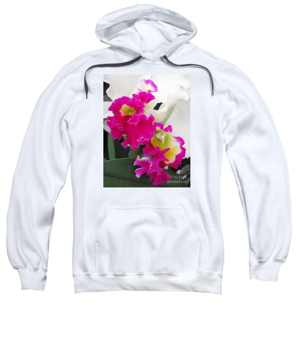 Orchid Sweatshirt featuring the photograph Hawaiian Orchid 10 by Randall Weidner