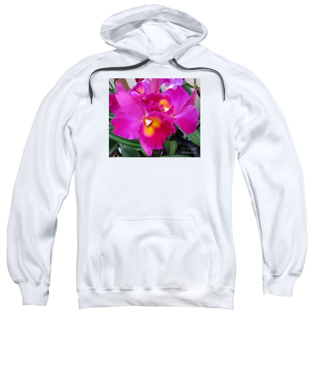 Orchid Sweatshirt featuring the photograph Hawaiian Orchid 3 by Randall Weidner