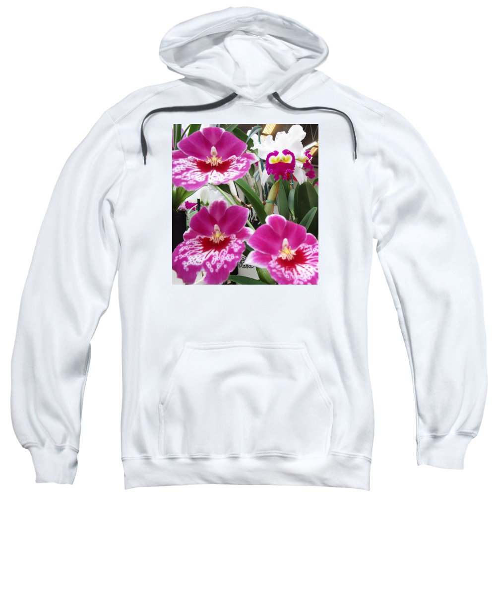 Orchid Sweatshirt featuring the photograph Hawaiian Orchid 5 by Randall Weidner