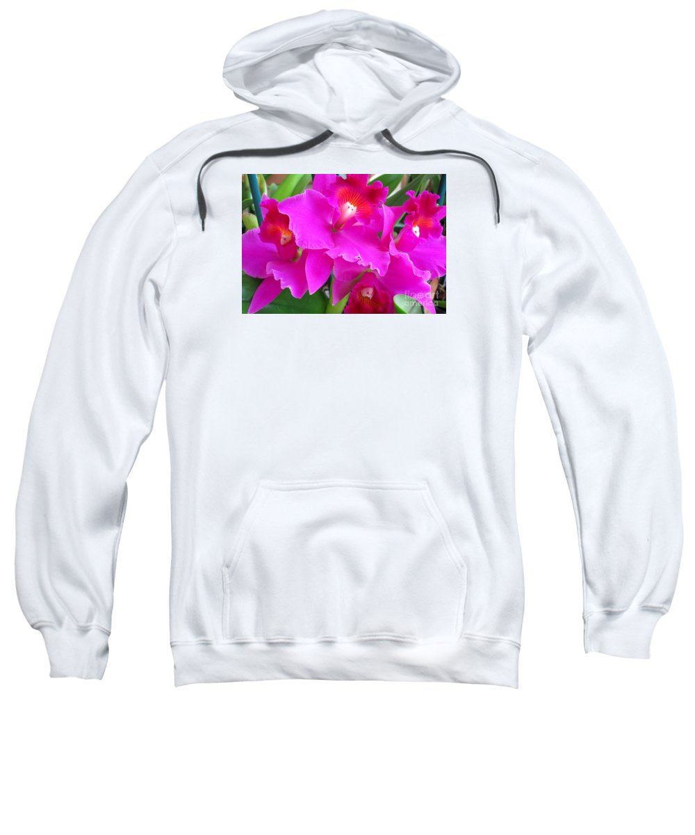 Orchid Sweatshirt featuring the photograph Hawaiian Orchid 8 by Randall Weidner