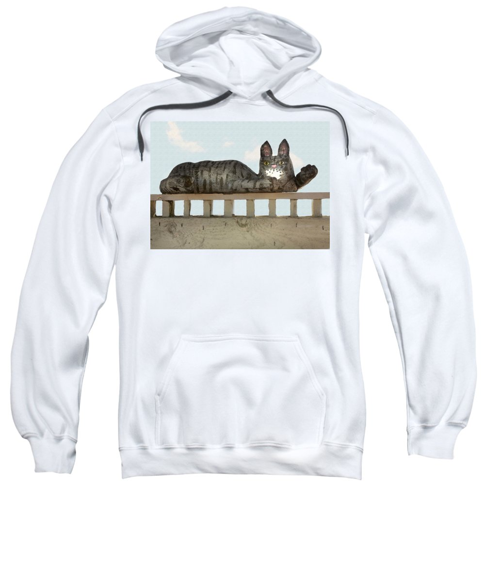 Cat Sweatshirt featuring the photograph Hello Kitty by Sharon Foster
