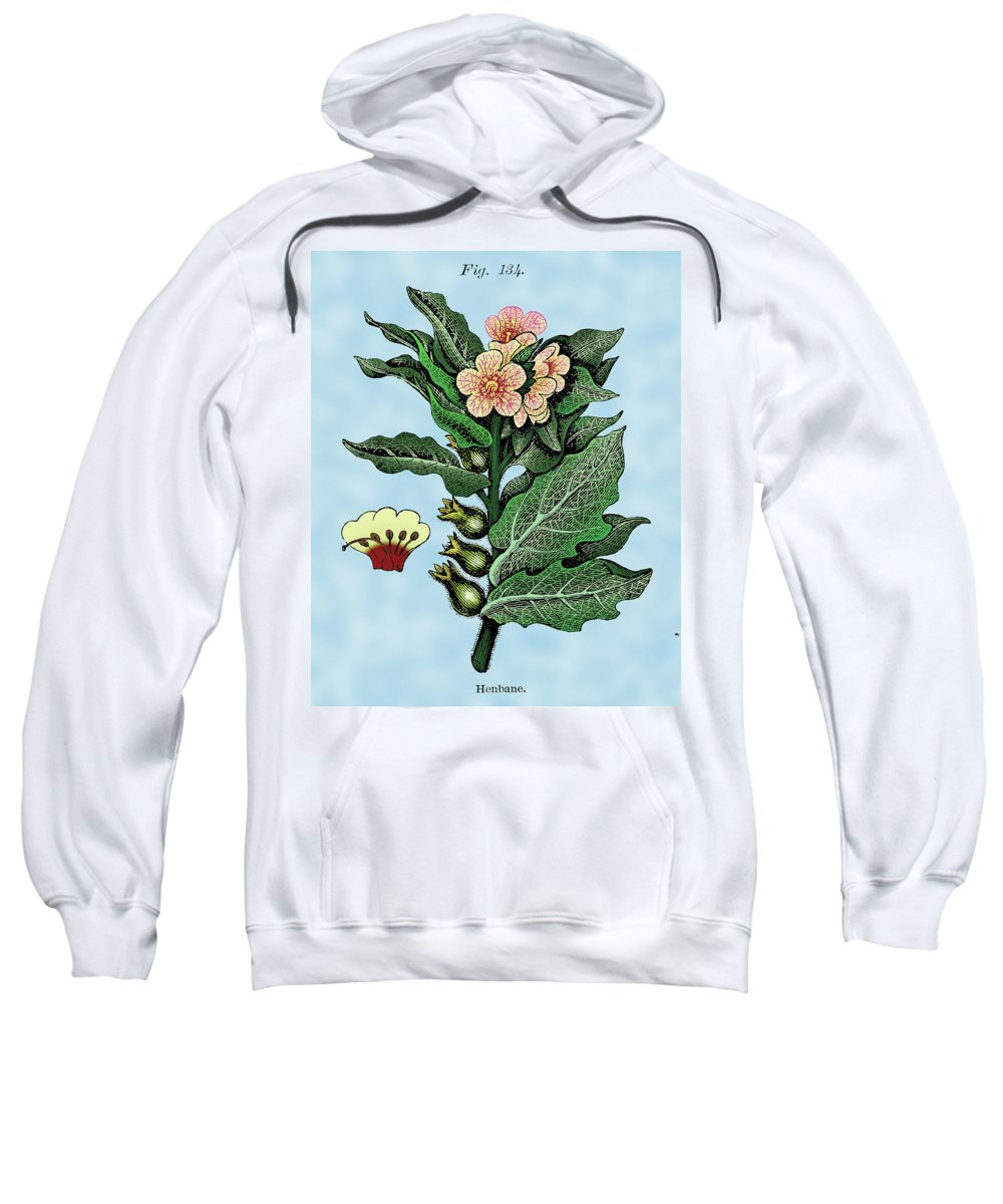 Henbane Sweatshirt featuring the digital art Henbane by Ziva