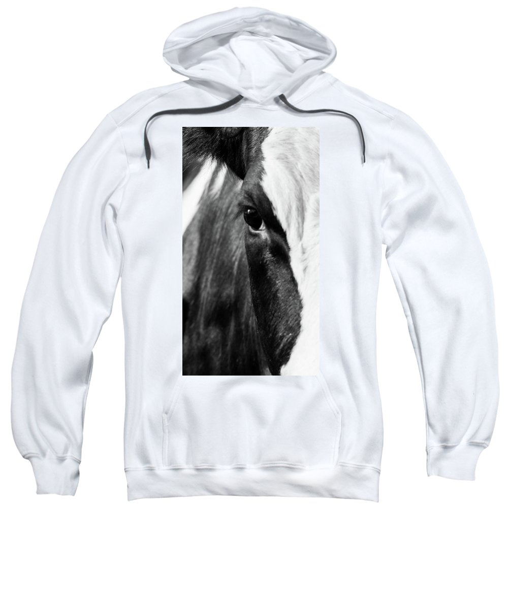 Cow Sweatshirt featuring the photograph Holstein by Heather Hubbard