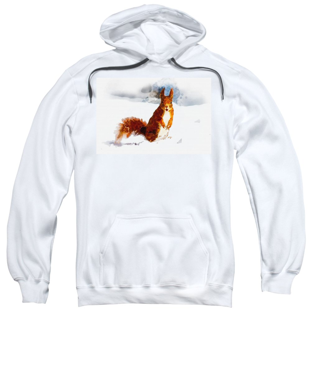 Art & Collectibles Sweatshirt featuring the digital art How Comedic Are Squirrels by Don Kuing