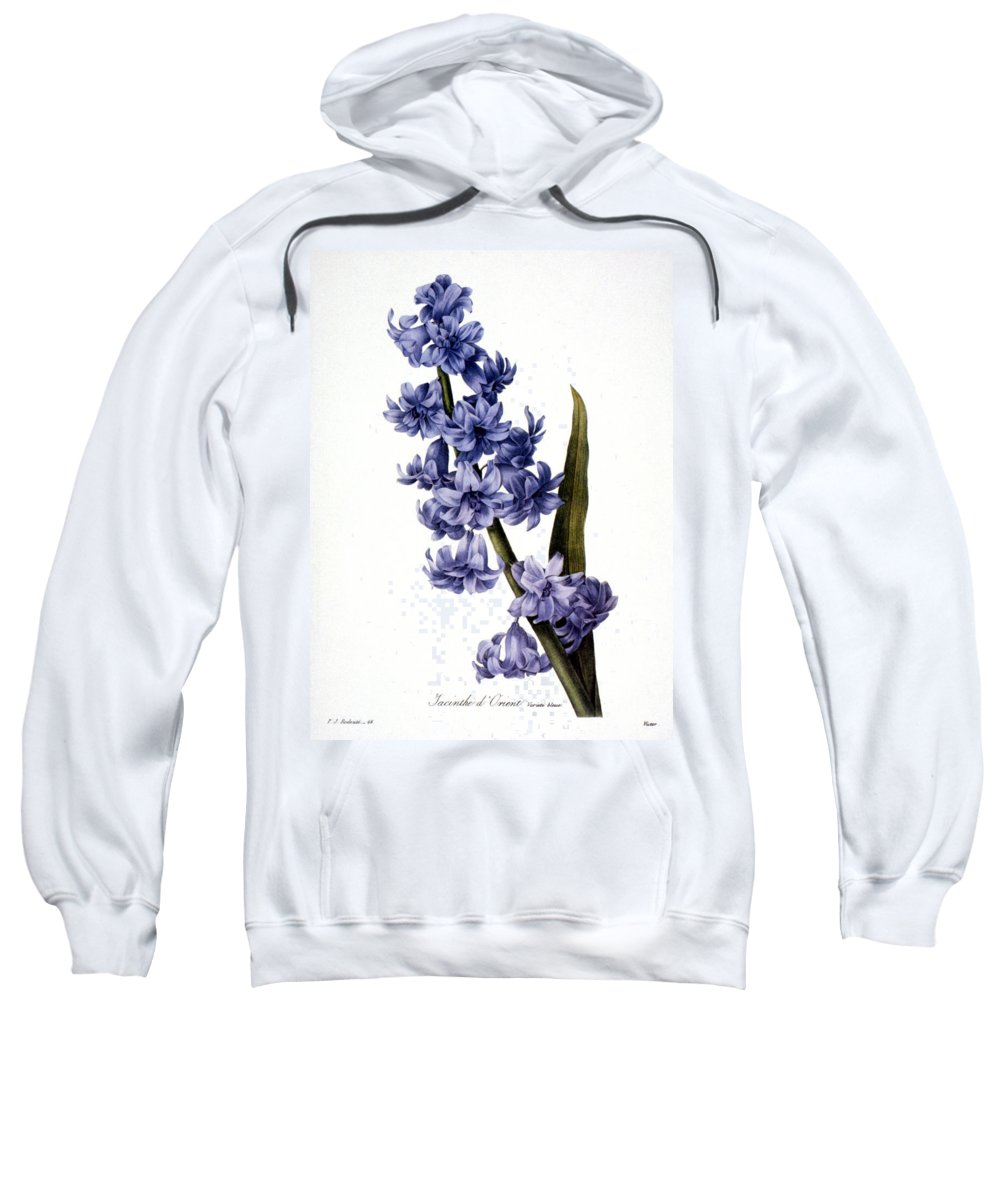 1833 Sweatshirt featuring the photograph Hyacinth by Granger