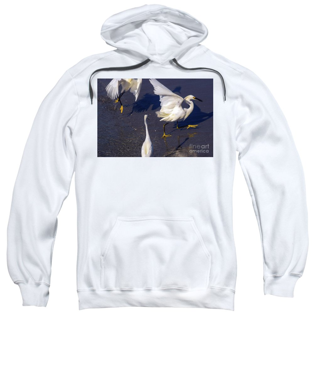 Snowy Egret Sweatshirt featuring the photograph I Am Not Impressed Guys by William Tasker