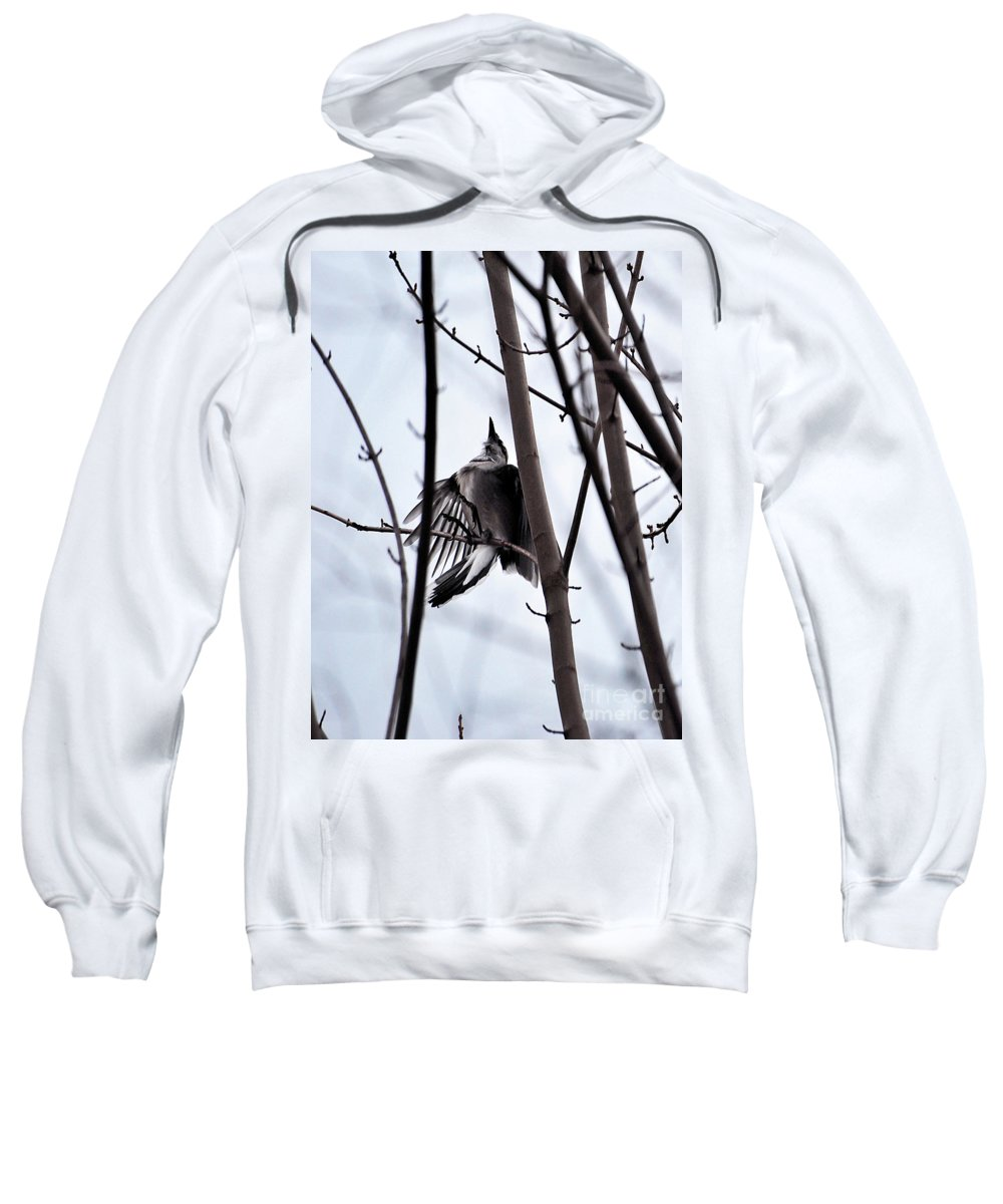 Bluejay Sweatshirt featuring the photograph I Missed Again by Lori Tambakis