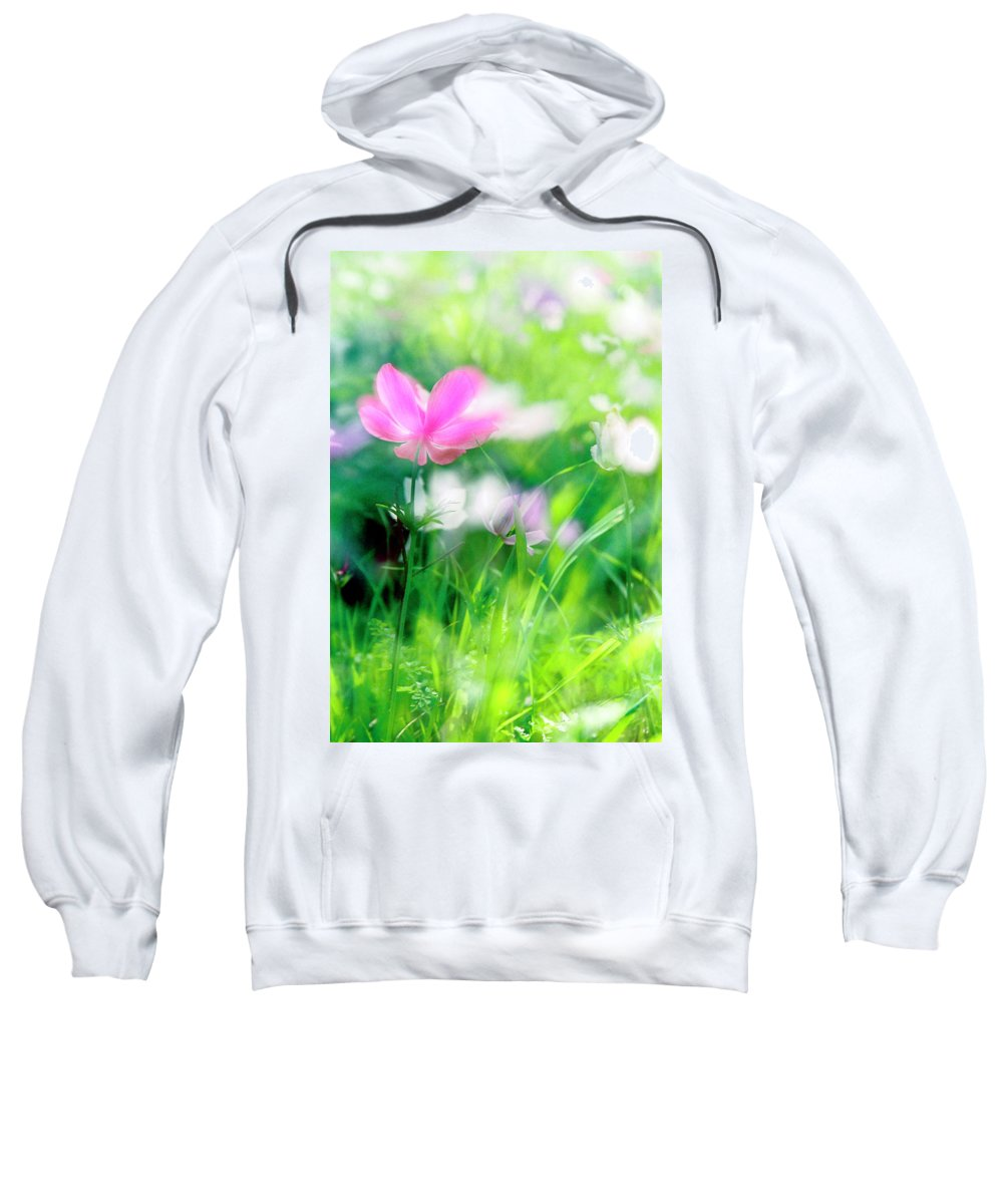 Impressionistic Sweatshirt featuring the photograph Impressionistic Photography At Meggido 3 by Dubi Roman