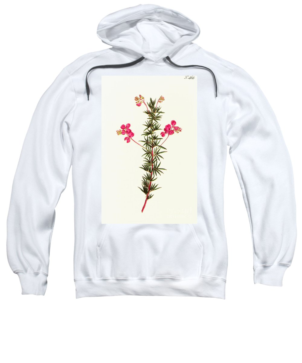 1799 Sweatshirt featuring the photograph Indigo Plant by Granger