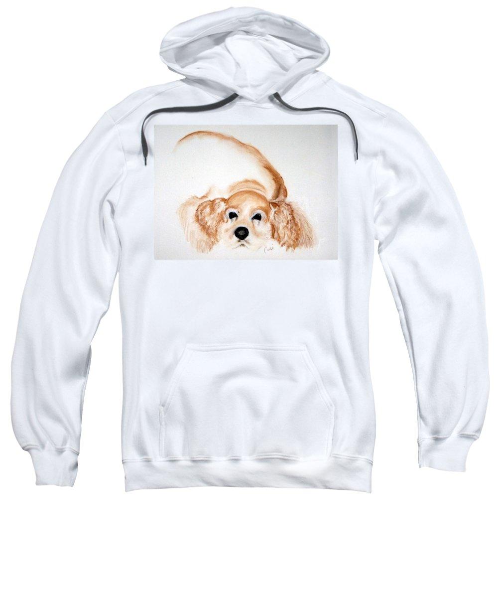 Cocker Spaniel Sweatshirt featuring the drawing Ipo's Dream by Cori Solomon