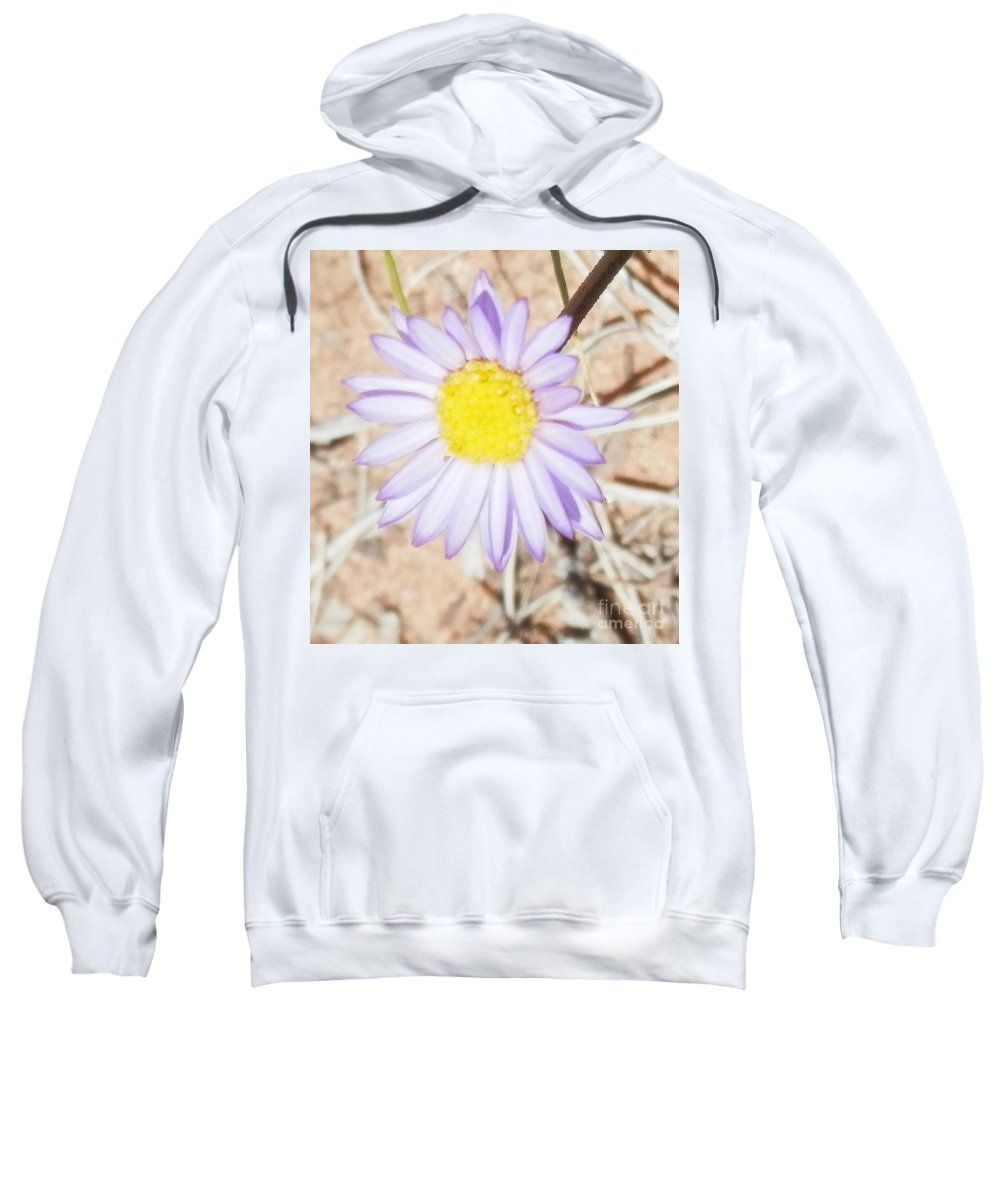 Dixie National Forest Sweatshirt featuring the photograph Itty Bitty In Dixie by L Cecka