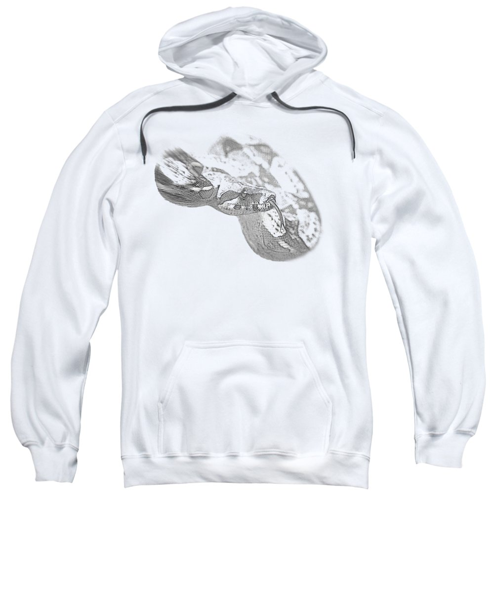 Boa Constrictor Hooded Sweatshirts T-Shirts