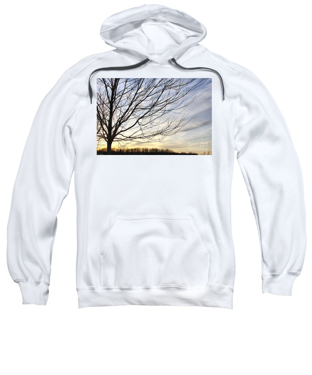 Sky Sweatshirt featuring the photograph Just A Tree And Clouds by Deborah Benoit