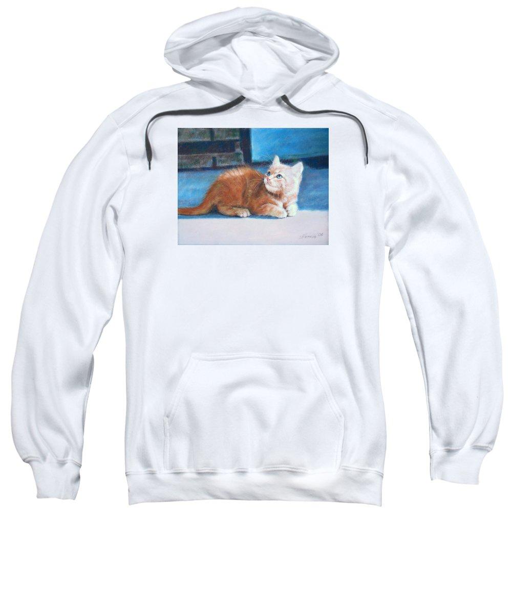 Cats Sweatshirt featuring the pastel Kitten by Iliyan Bozhanov