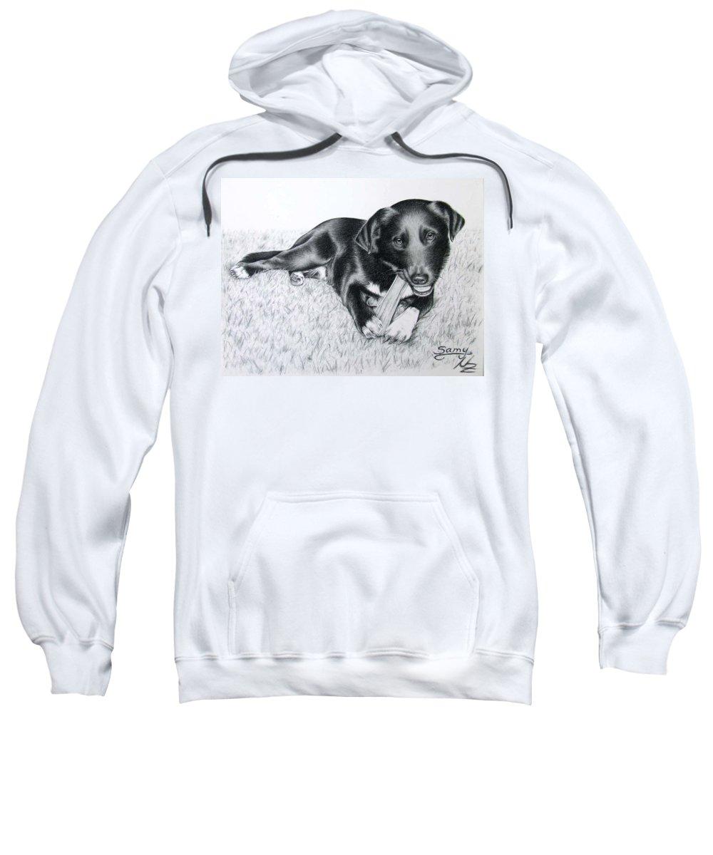 Dog Sweatshirt featuring the drawing Labrador Samy by Nicole Zeug