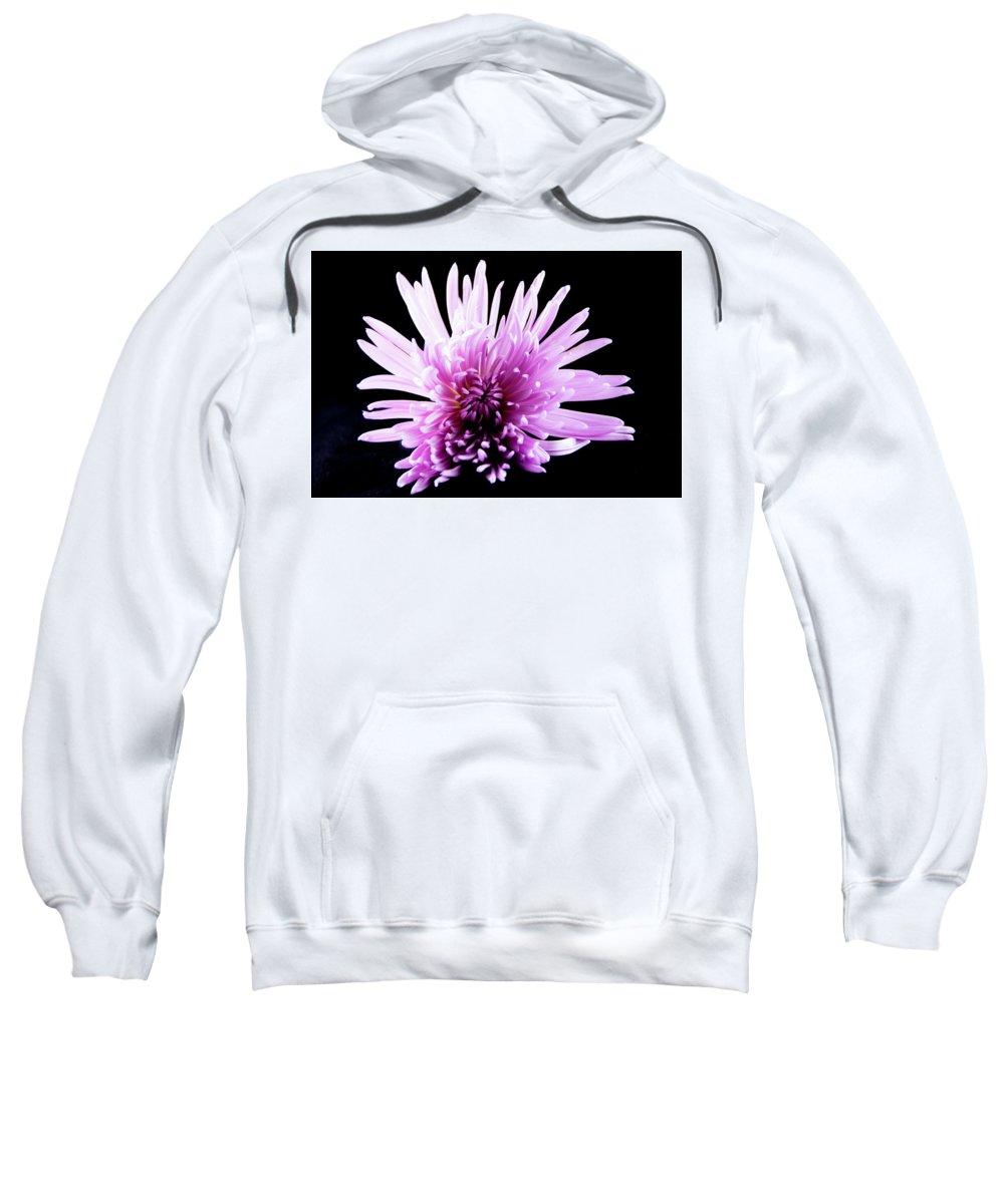 Macro Sweatshirt featuring the photograph Large Purple Chrysanthemum-1 by Jennifer Wick