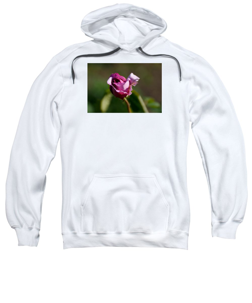 Flower Sweatshirt featuring the photograph Lavender Rose by Toni Berry