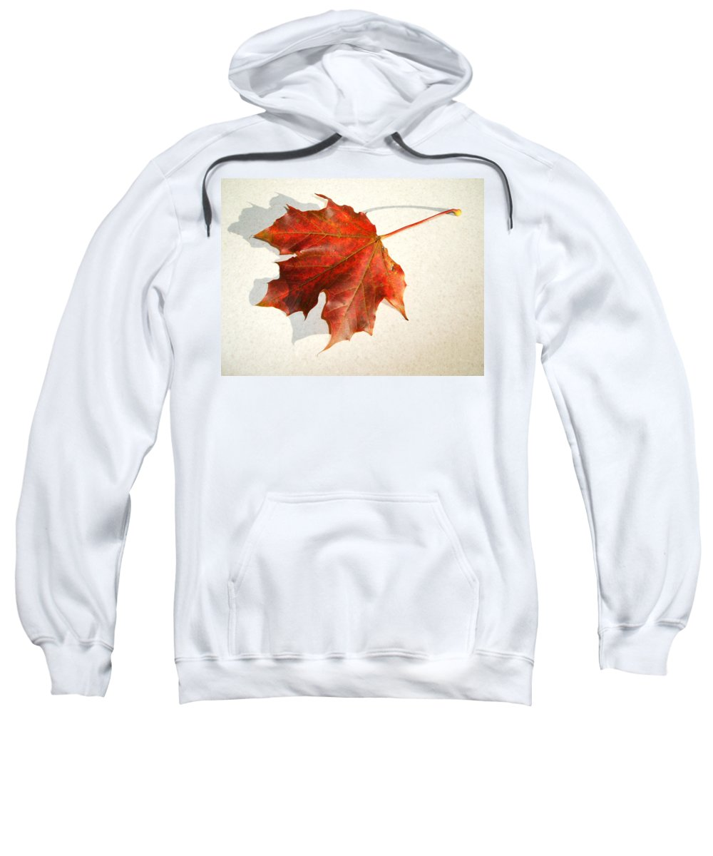 Leaf Sweatshirt featuring the photograph Leaf by Cliff Norton