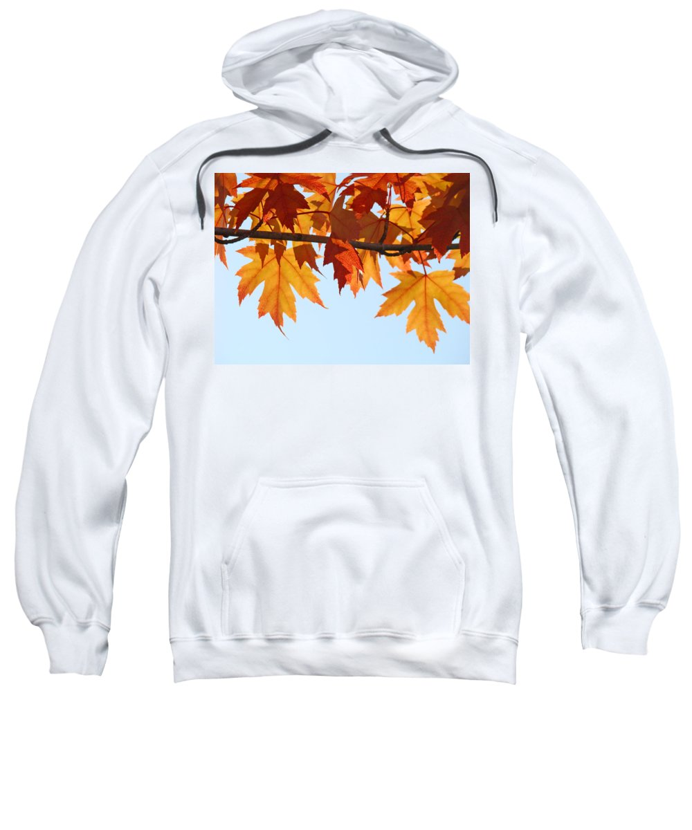 Autumn Sweatshirt featuring the photograph Leaves Autumn Orange Sunlit Fall Leaves Blue Sky Baslee Troutman by Baslee Troutman