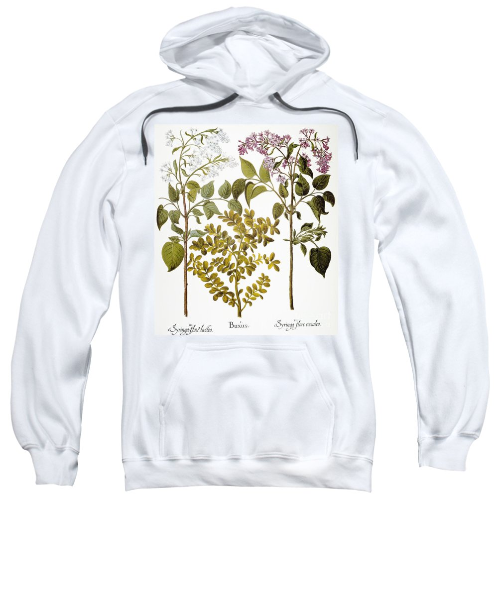 1613 Sweatshirt featuring the photograph Lilac And Box, 1613 by Granger