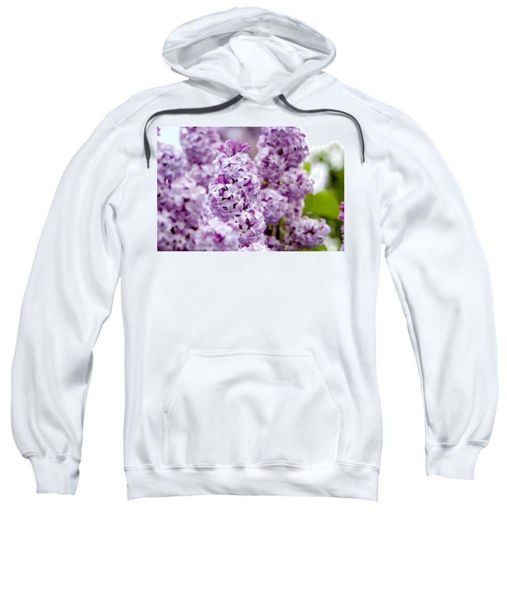 Lilac Sweatshirt featuring the photograph Lilac by Greg Fortier