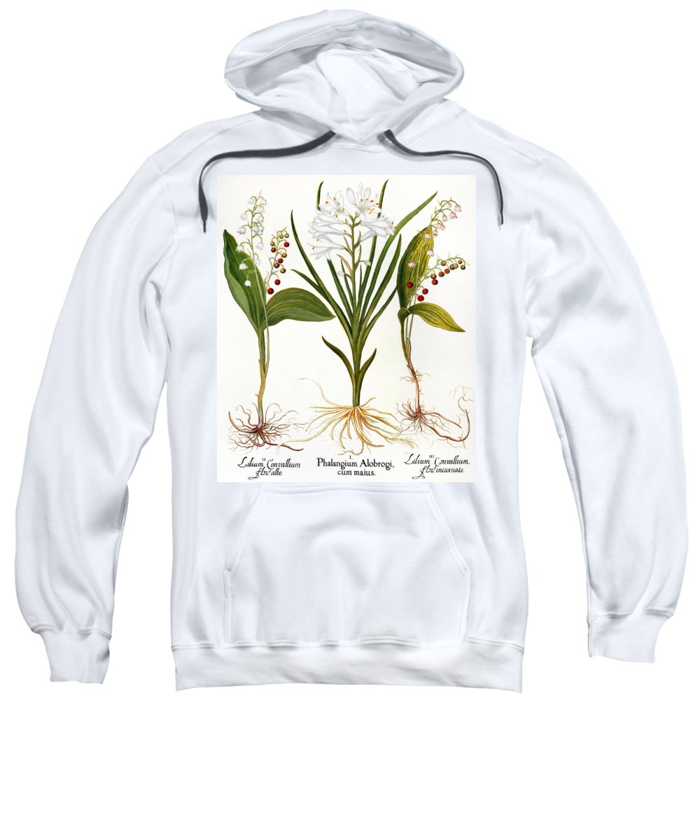 1613 Sweatshirt featuring the photograph Lily-of-the-valley by Granger