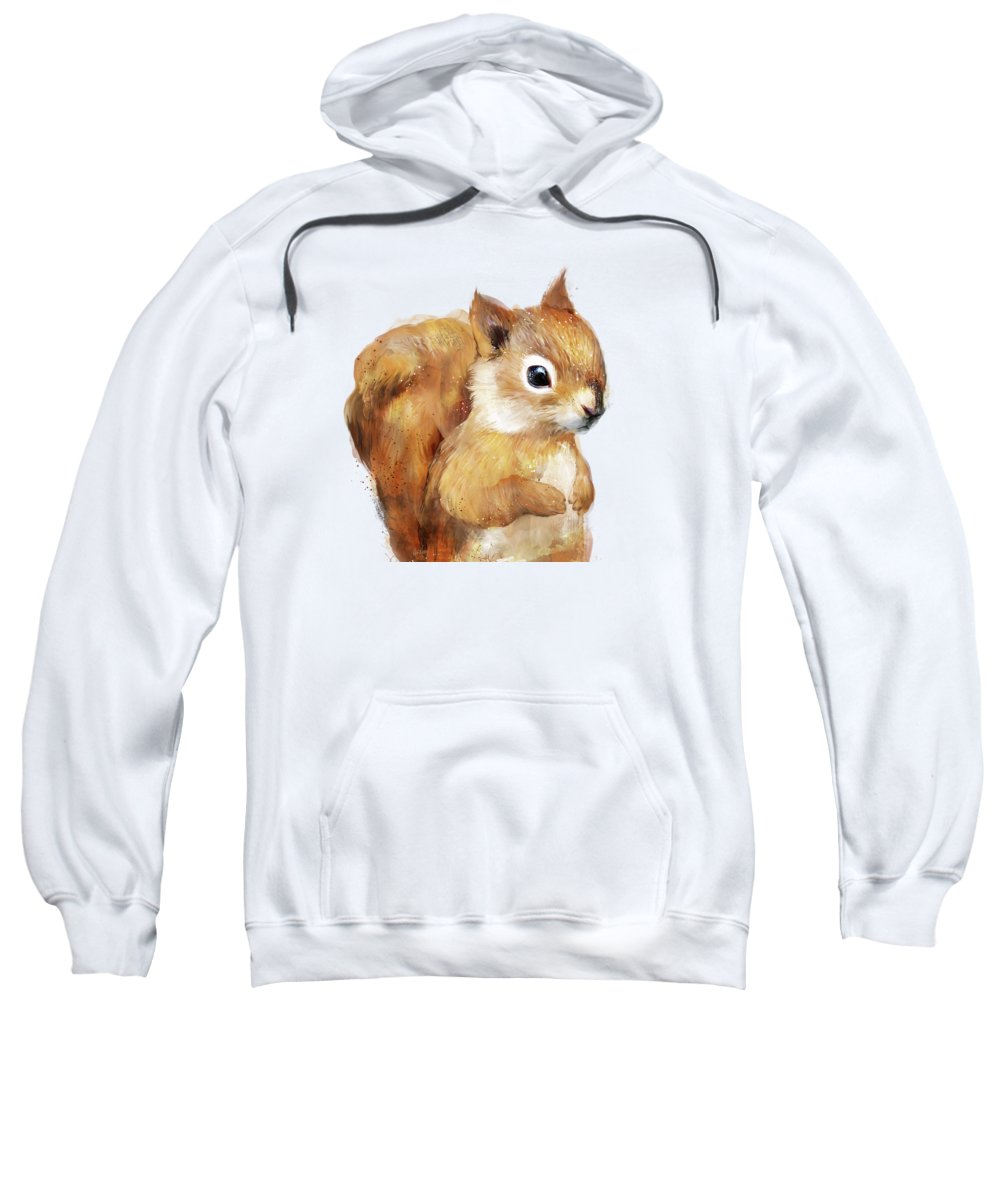 Squirrel Hooded Sweatshirts T-Shirts
