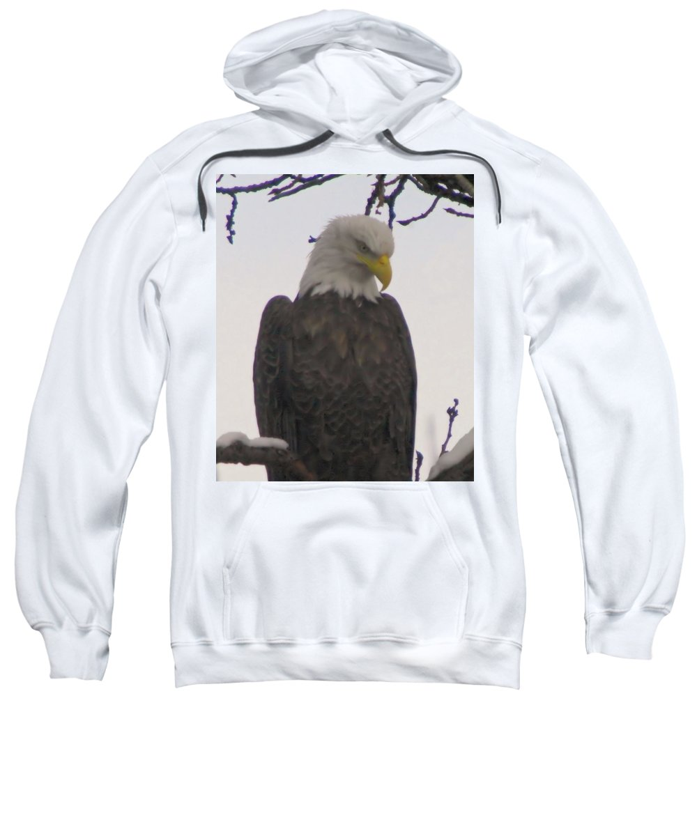 Eagles Sweatshirt featuring the photograph Looking Down by Jeff Swan
