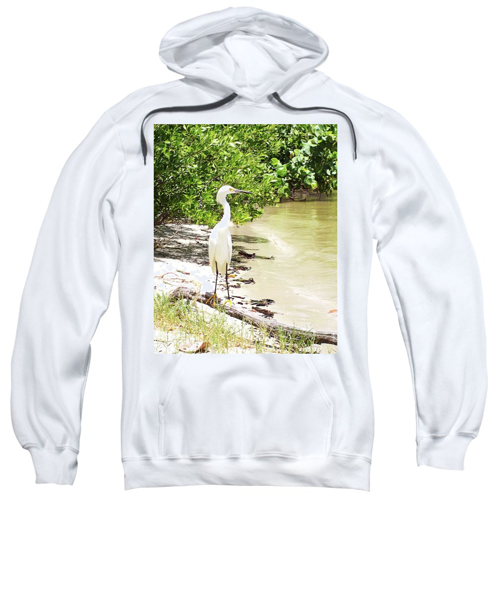 Florida Sweatshirt featuring the photograph Looking For Lunch Gp by Chris Andruskiewicz