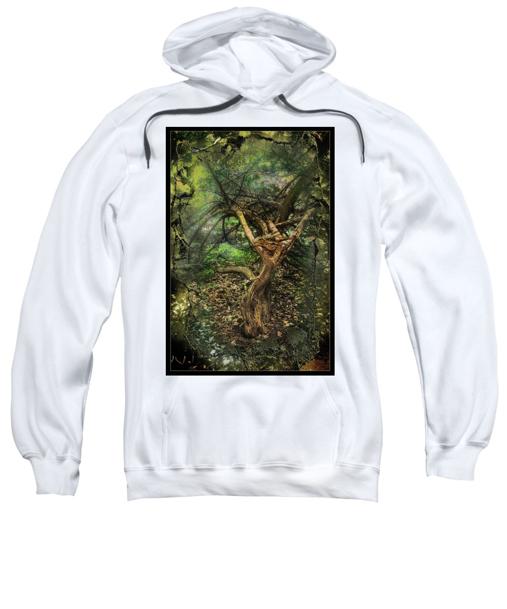 Dragons Sweatshirt featuring the photograph Looking Grimm by John Anderson
