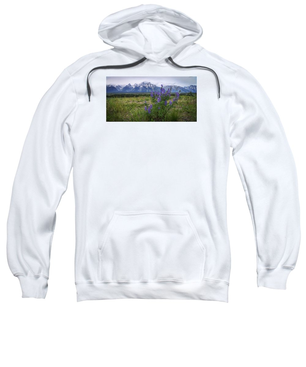 Lupine Beauty Sweatshirt featuring the photograph Lupine Beauty by Chad Dutson