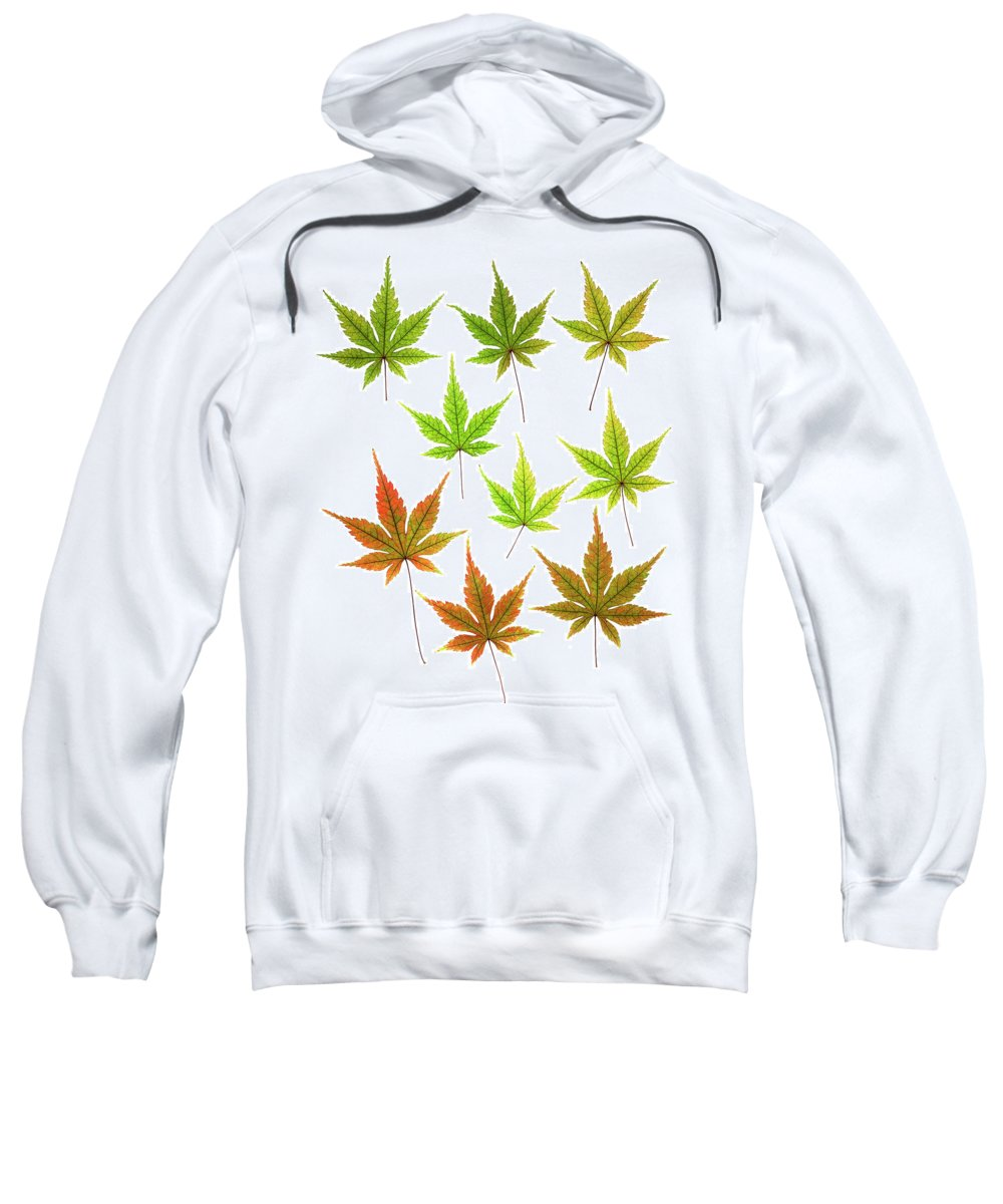 Leaves Sweatshirt featuring the photograph Maple Leaves by Stefania Levi