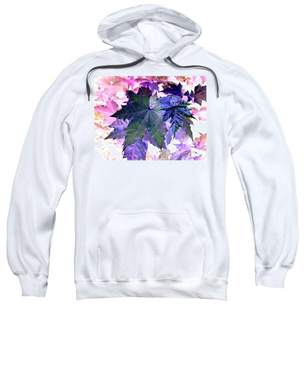 Dramatic Sweatshirt featuring the photograph Maple Magnetism by Will Borden