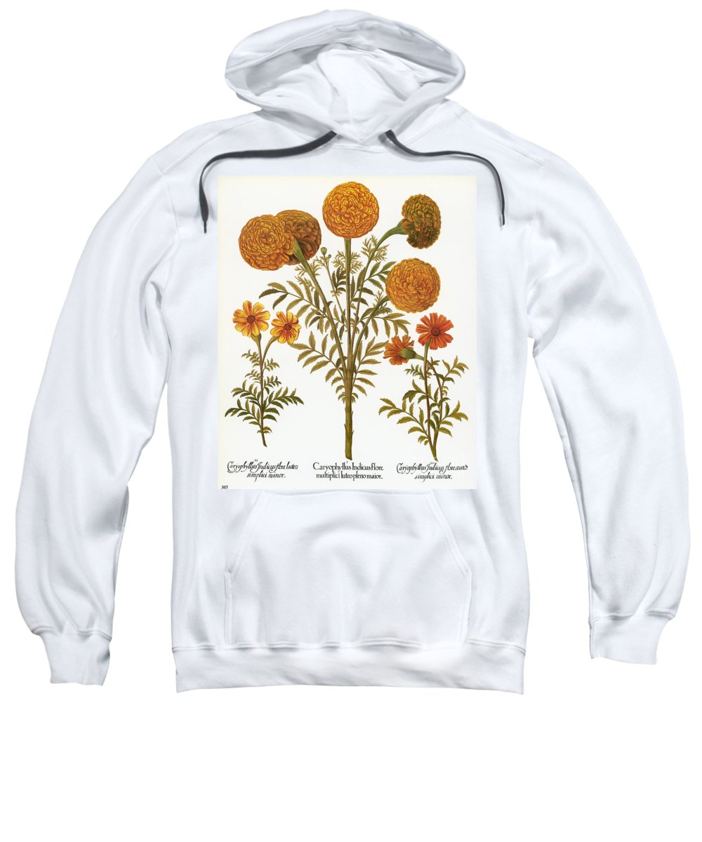 1613 Sweatshirt featuring the photograph Marigolds, 1613 by Granger