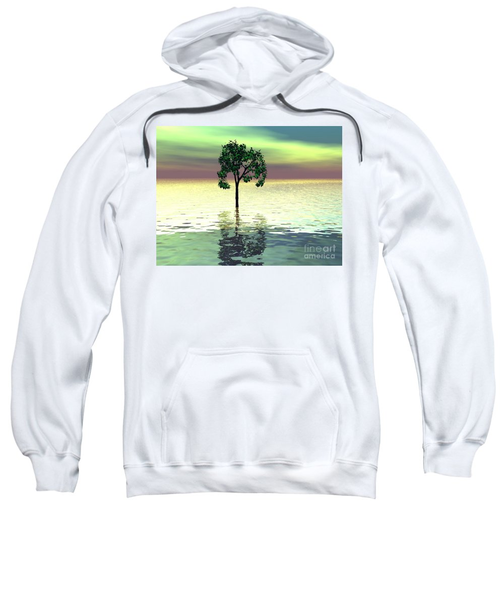 Decorative Sweatshirt featuring the digital art Meditation by Oscar Basurto Carbonell