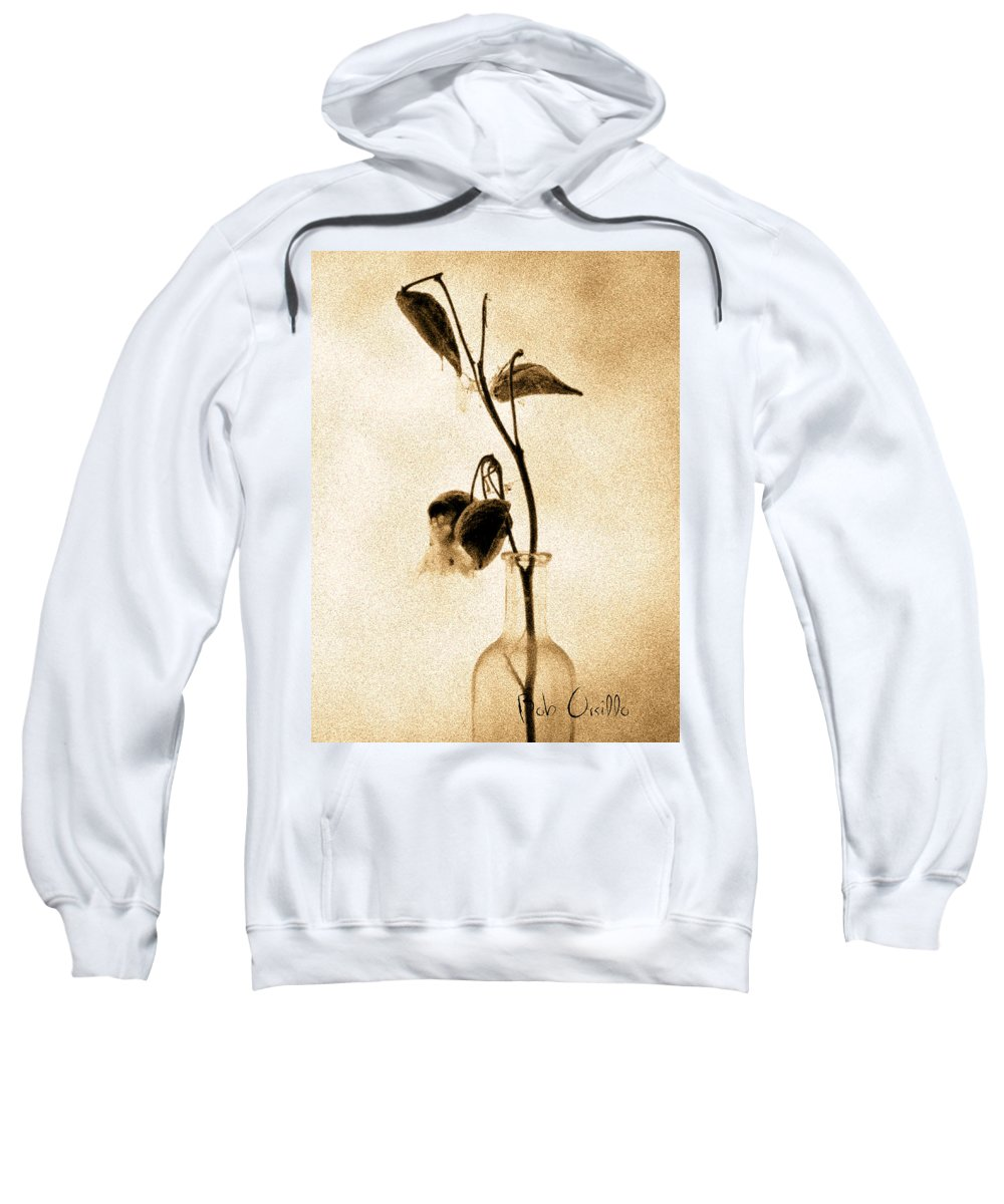 Plant Sweatshirt featuring the photograph Milk Weed In A Bottle by Bob Orsillo